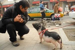 Crazy short trip to Beijing