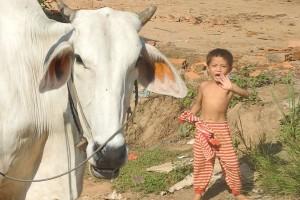 Through the Cambodian countryside