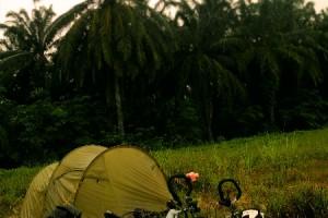 Mit dem Rad durch Malaysia Teil 3: Gewitterland