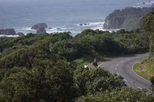Mit dem Rad durch Neuseeland Teil 5: Mensch gegen Möwe
