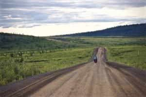 Dempster Highway per Fahrrad Teil 1: Hungrig wie die Bären