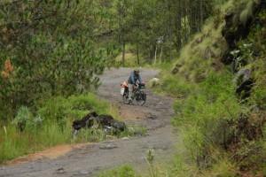 Der höchste Punkt der Reise – Zentralmexikanische Bergwelt