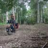 Maya ruins and rain forest – Yucatán by bike