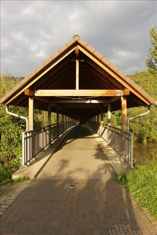 Puente de Bici