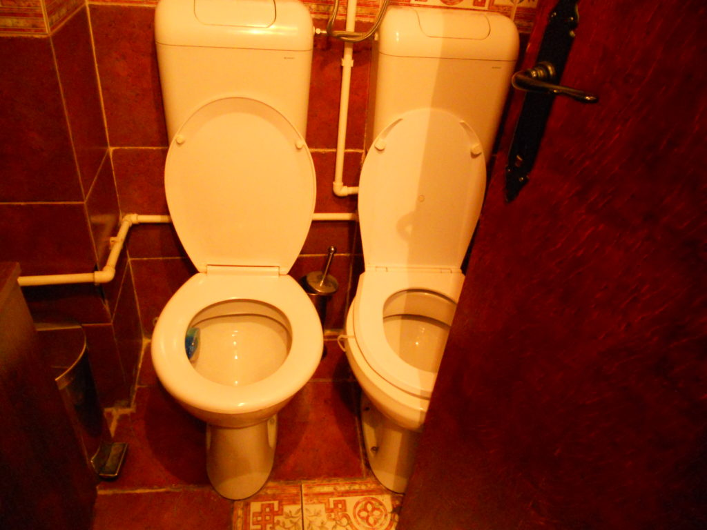 Double toilet found in Niš, Serbia