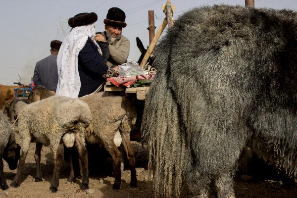 Russische, usbekische und kirgisische Kopfbedeckungen auf dem Tiermarkt in Kashgar