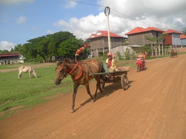 Pferdekutschen in Kambodscha