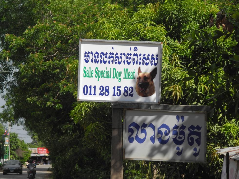 Khmer food: dog meat