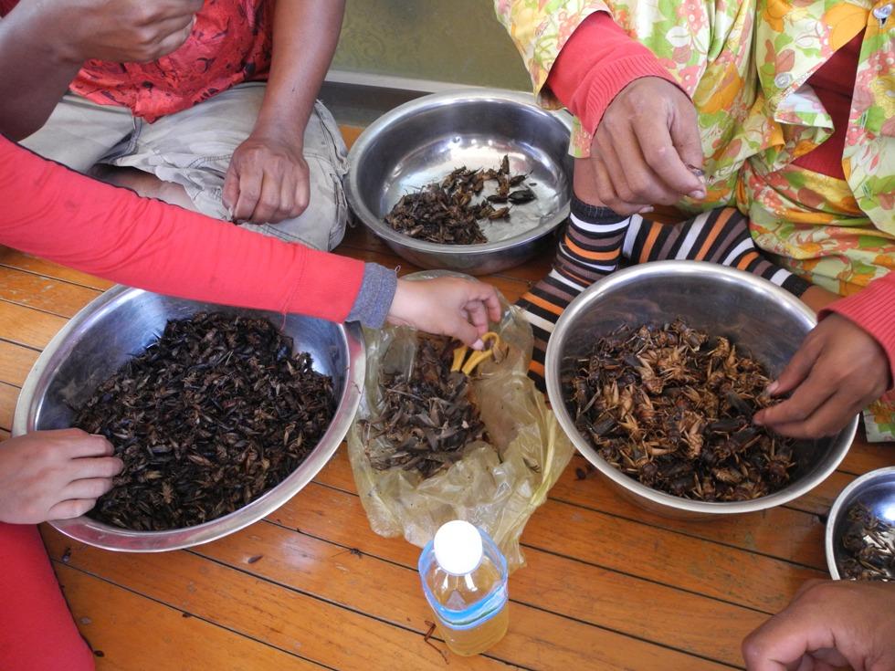 Khmer food: bugs