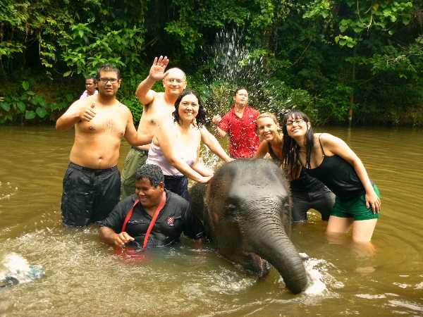 The best elephant-bathing crew