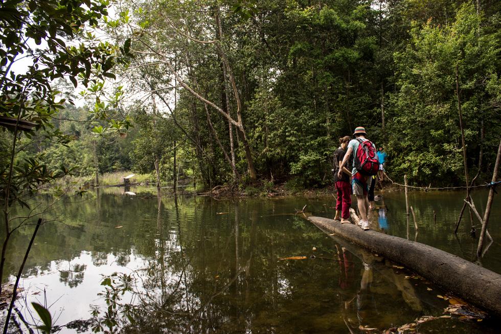 Camino hacia la Cascada