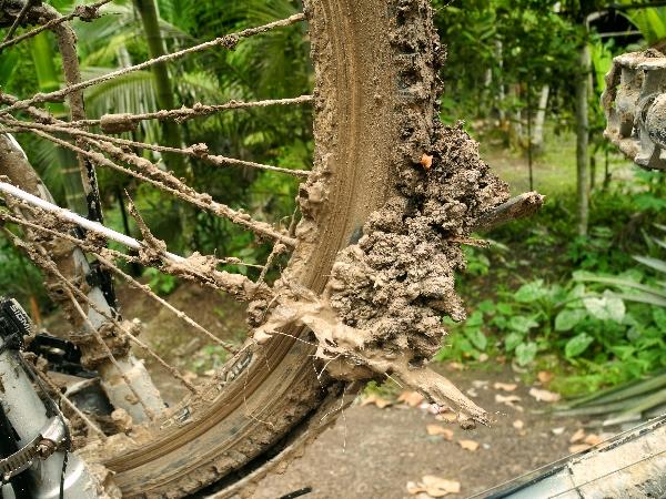 Muddy mudguard
