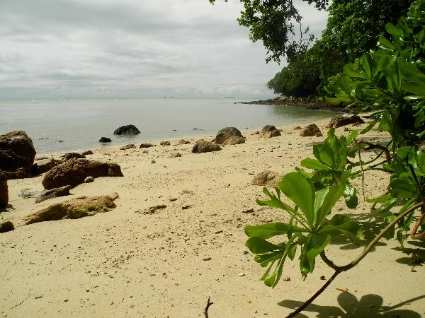 Beach in Tanjung Tian, Malaysia