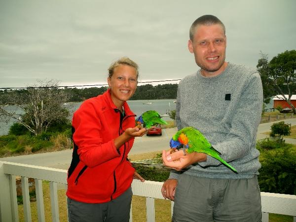 Matt und Annika füttern die wilden Papageien