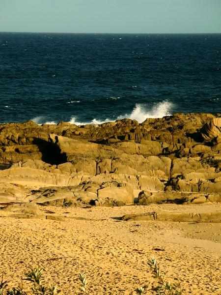 Mimosa Rocks Nationalpark
