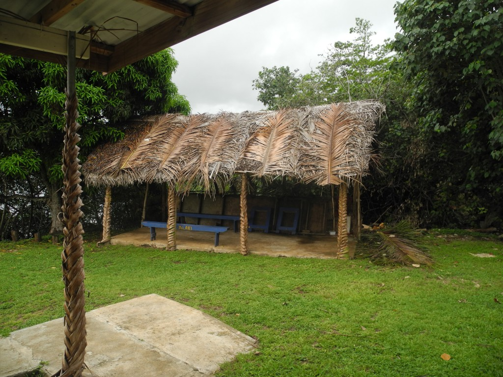 Typical Tongan house