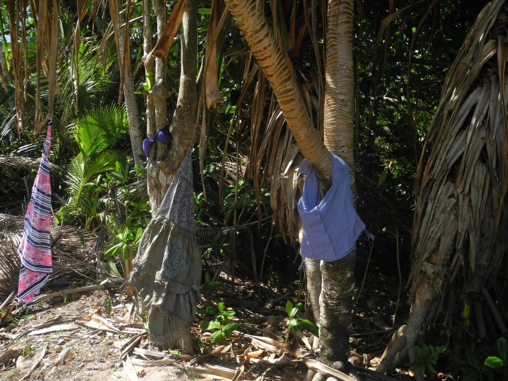 Nature's Wardrobe