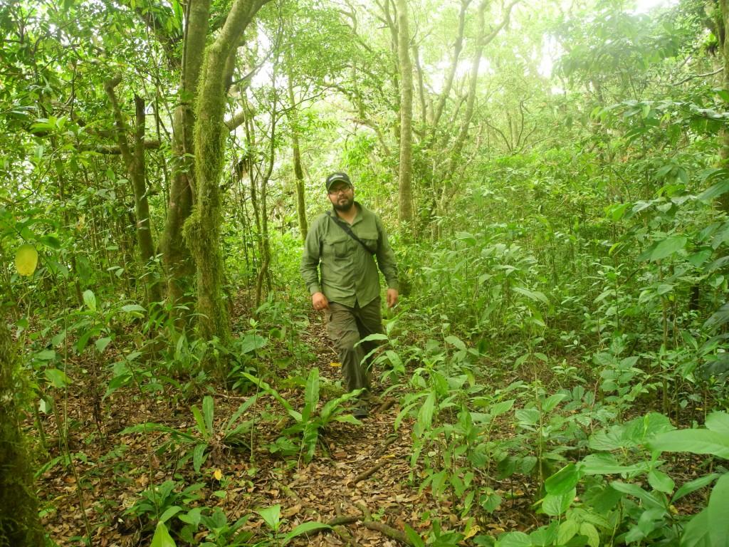 Hiking trails in 'Eua