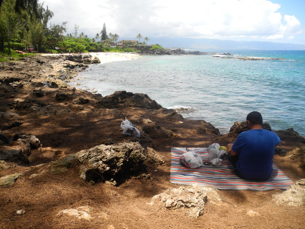 Picknick on the sea of Hawai'i