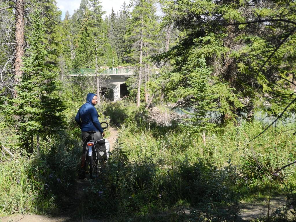 Biking through Jasper