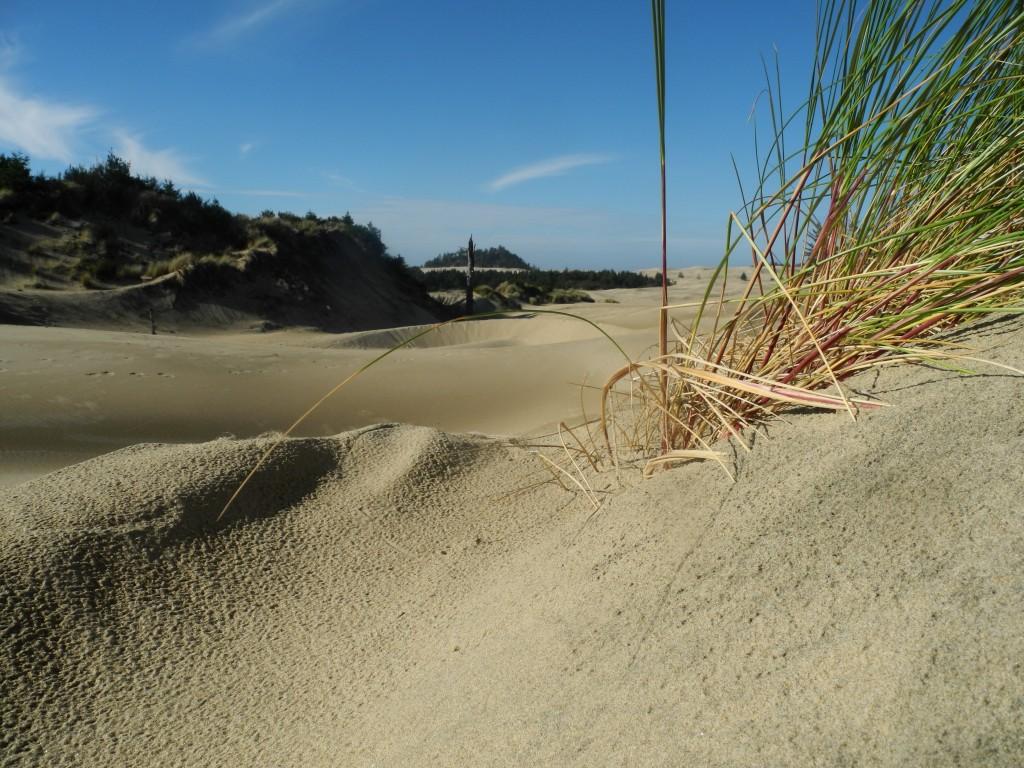 Sand Dunes around Dune City, Oregon
