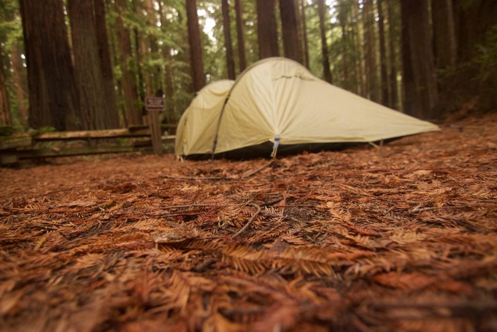 Redwoods Camping Hiker Biker