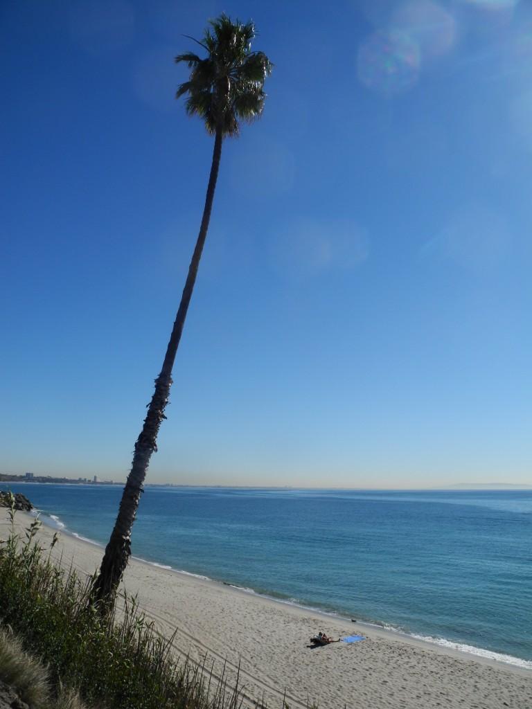 Between Malibu and Santa Monica