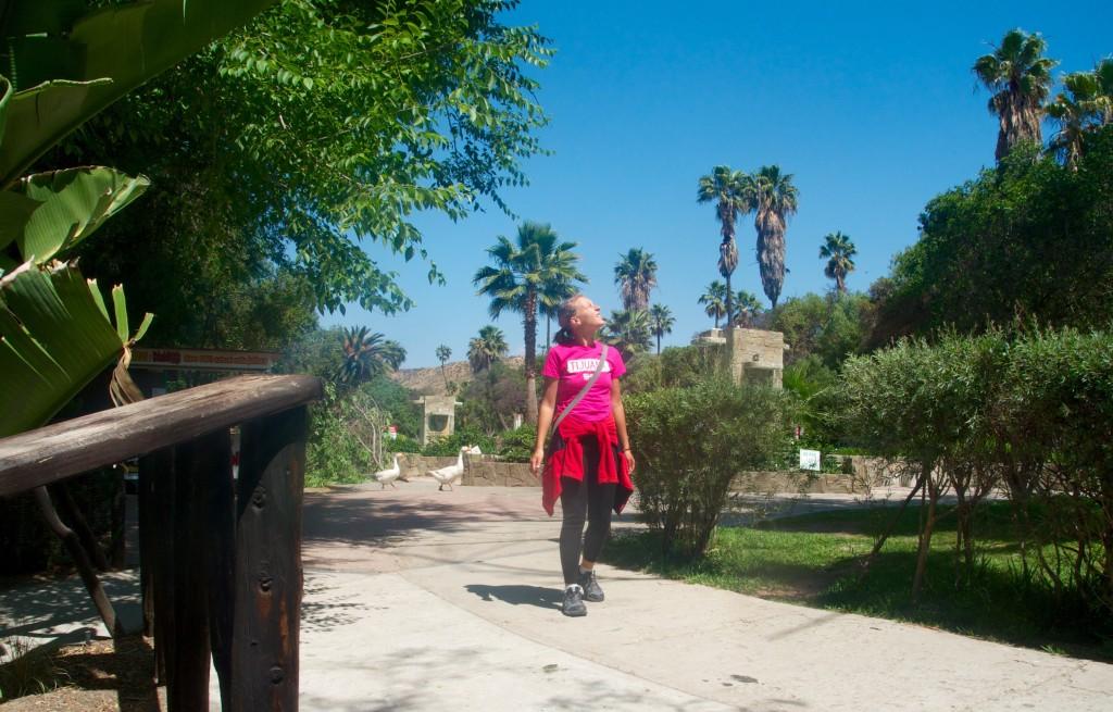 Parque Morelos en Tijuana