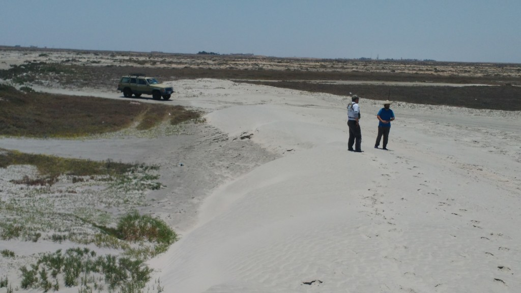 Sand Dunes near Guerrero Negro