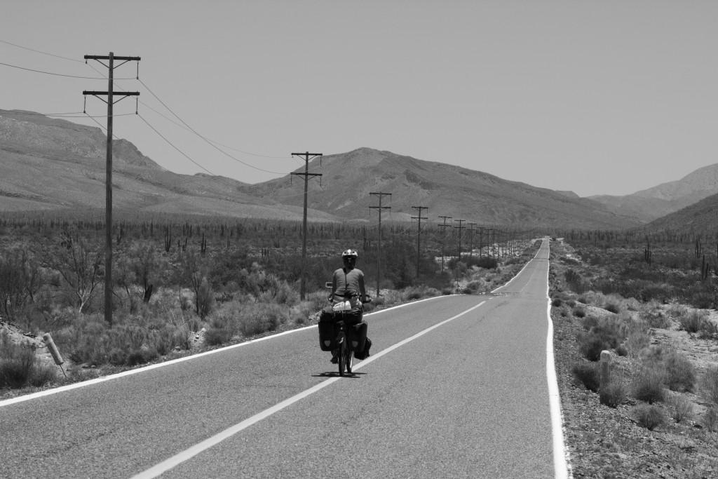 El Camino en el Desierto
