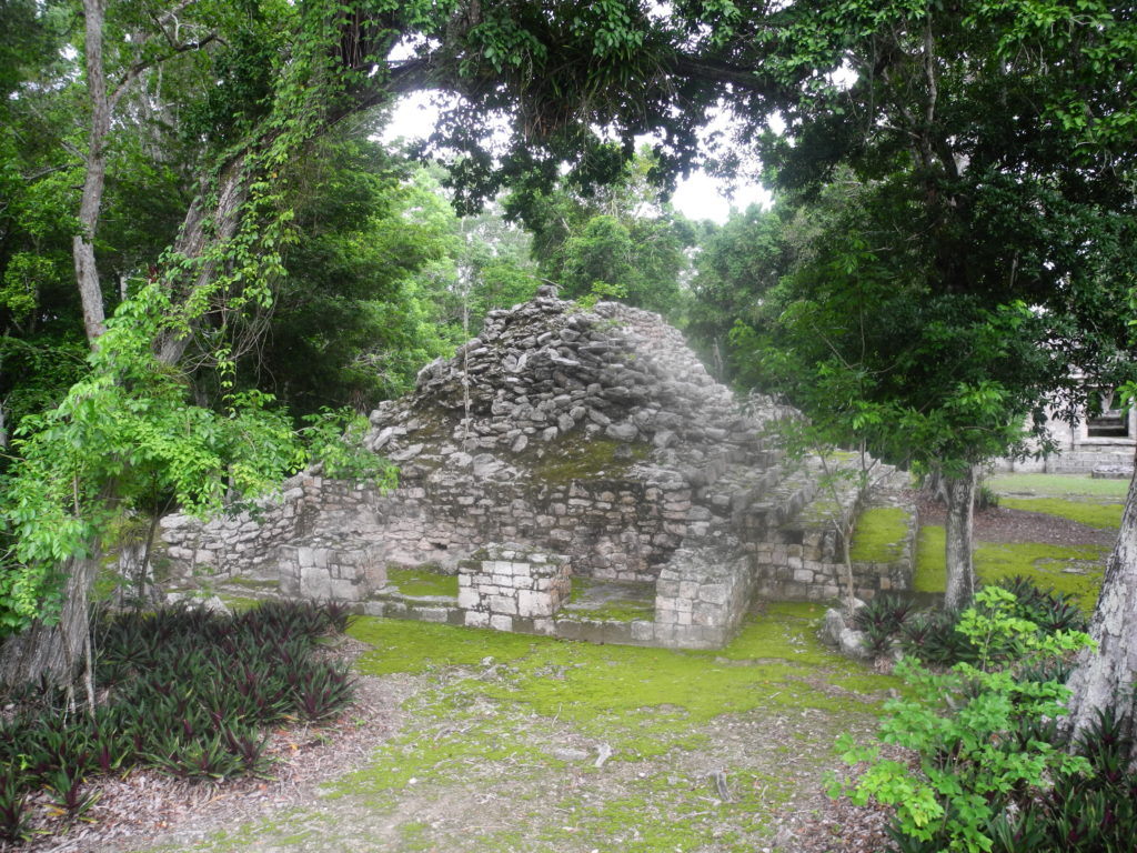 Maya ruins surrounded by jungle in Mexico