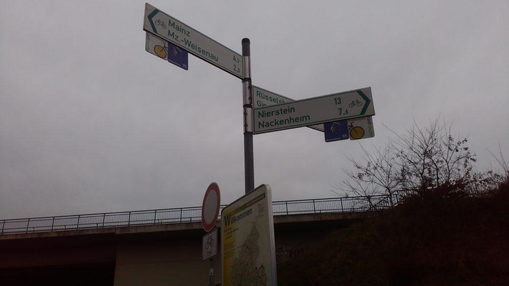 Eurovelo 15 along the Rhine river