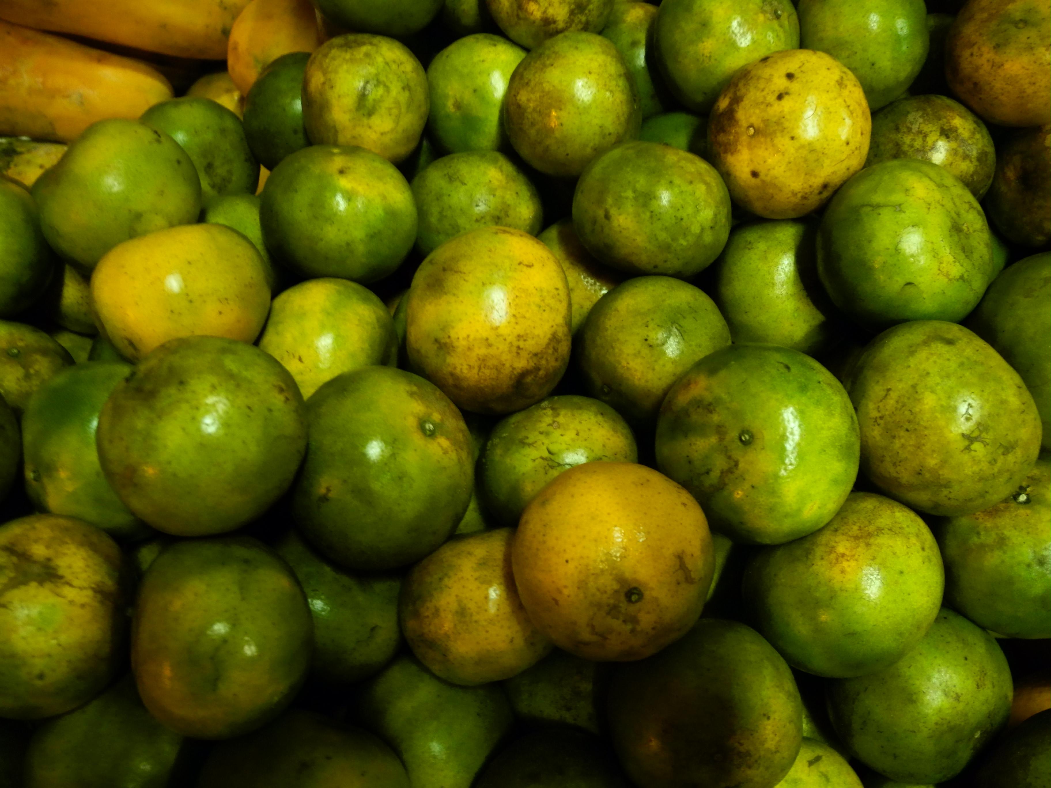 Orange Limes